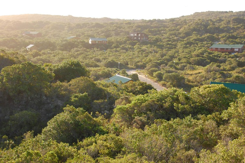Land,For Sale,1015